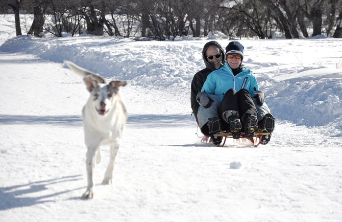 Nellie the dog leads the way as Chris and Jessica Speer sled down Blackmer Drive on Friday afternoon. The new master plan for the park aims to protect the parks tranquility versus adding any major recreational development.