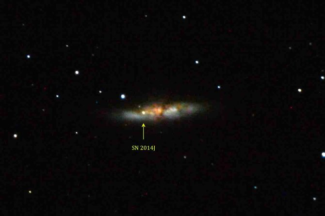 "Supernova 2014J exploded in the not-so-far-away ""Cigar Galaxy"" (Messier 82) last week. Amateur astronomers and other enthusiasts can see the ""new star"" visually through a medium-sized telescope. This image is a time-exposure photograph of M82 and the supernova taken through an 11-inch telescope the night of Jan. 23."