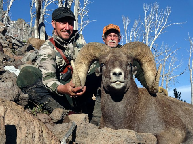 Bighorn sheep is one of ten species included in Wyoming's new Super Tag Hunting License Raffle, which will give hunters across the nation a chance to hunt premier big game species without a decade-long wait.