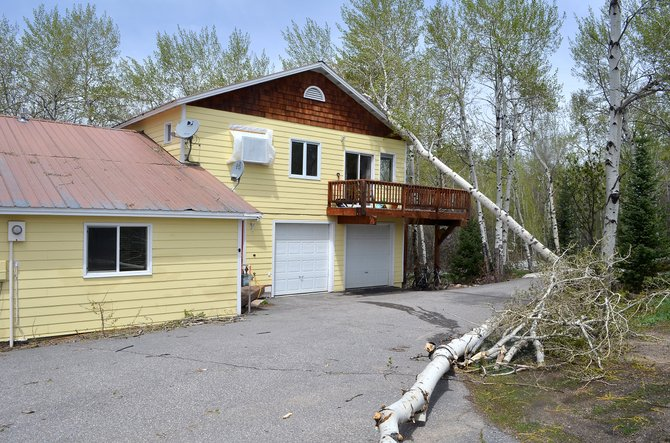 There was no immediately apparent damage after 40-mph-plus wind gusts dropped a pair of aspen trees on the roof of a home on Fish Creek Falls Road on Sunday morning. A wind gust of 51 mph was recorded at Steamboat Springs Airport during the Mother's Day storm.