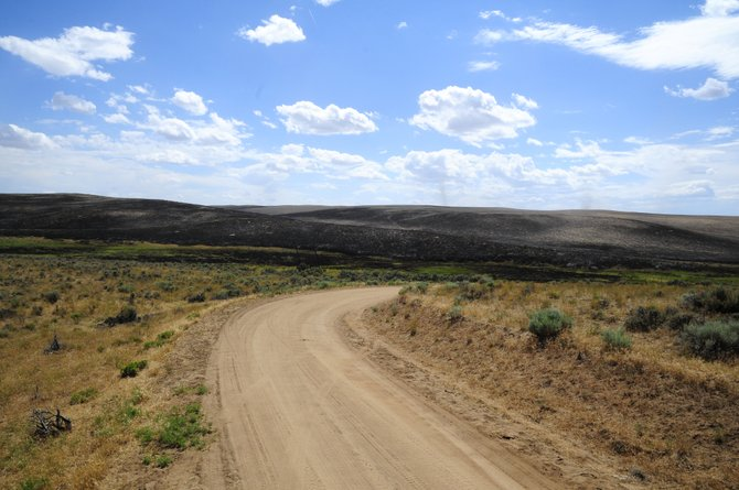 Charred land near Moffat County Road 44 left behind by the Alkali Fire Wednesday and Thursday.