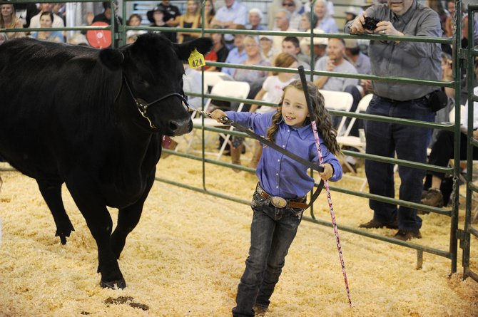 Josie Meyring, 8, presents her steer during the Routt County Fair junior livestock sale Saturday at the Routt County Fairgrounds.