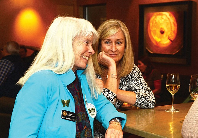 Democrat Diane Mitsch Bush and supporter Christina Rosch smile after Mitsch Bush took an early lead over challenger Chuck McConnell in the race for the state House of Representatives in Tuesday night's election. Mitsch Bush went on to win the seat.