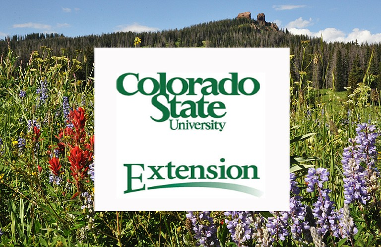 Routt County CSU Extension