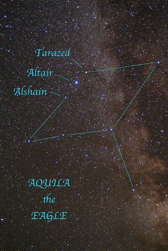 Aquila, the Eagle reaches its highest point in the sky about 10 p.m. this week. Face directly south and look about two-thirds of the way up from the horizon to the zenith. There shines Altair, Aquila's alpha star, flanked by its companion stars, Alshain and Tarazed.