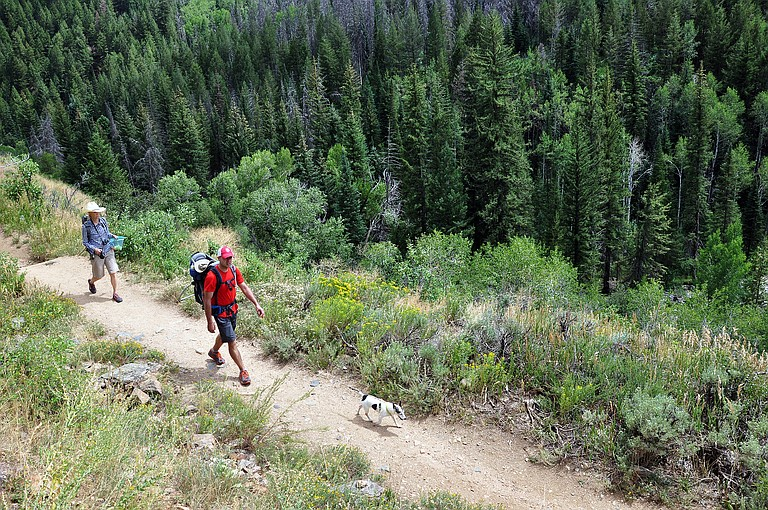 Matt Weiss, carrying Hunter, and Carla Serantoni follow dog Paddy while hiking down the Mad Creek Trail on a warm August day.