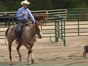 Andy Kurtz: Horsemanship
