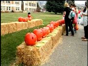 Win prizes!  Bring your best jack o' lantern to the courthouse lawn for the Festival o' Pumpkins put on by the Steamboat Springs Arts Council.  Watch the video for all the great details.